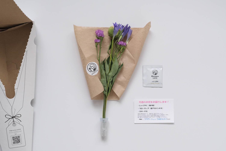 2回目に届いたブルーミーライフのお花一覧