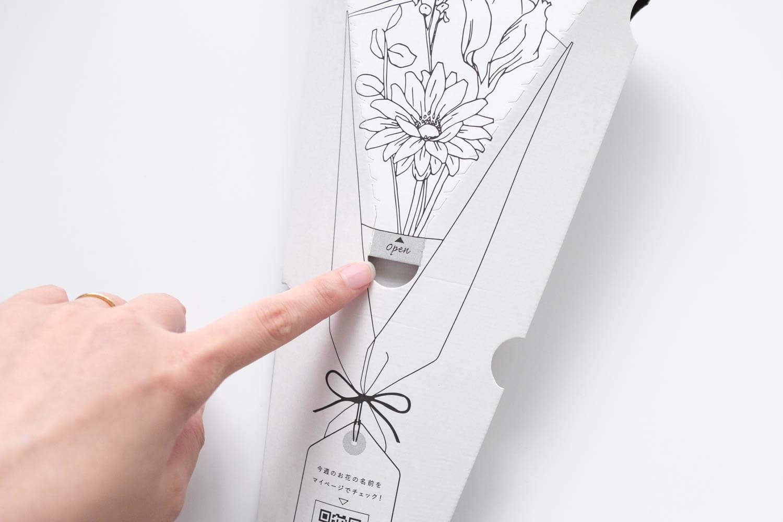 ブルーミーライフの箱は正面から切り取り線に沿って開ける