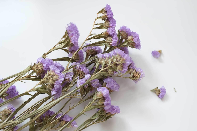 ドライフラワー福袋 紫の花