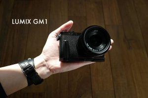 gm1-eye