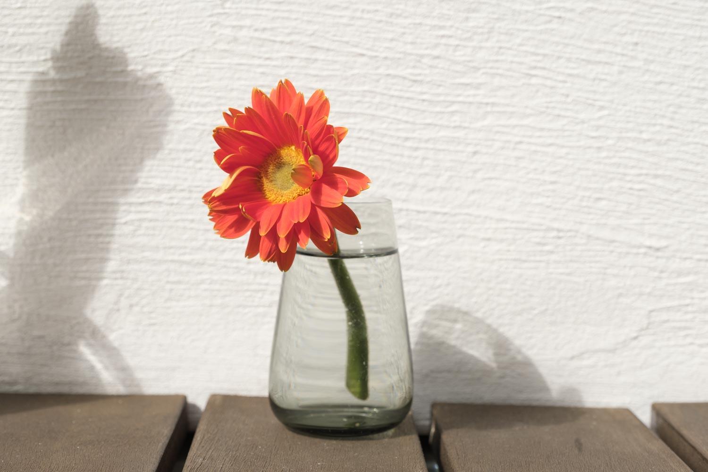 KINTO(キントー)アクアカルチャーベース80mmグレーを花瓶にしたところ
