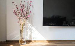 ニトリ フラワーベース シリンダー 桃の木
