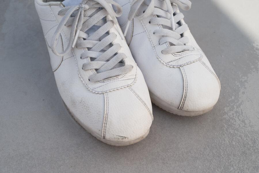 sneaker-shampoo-16